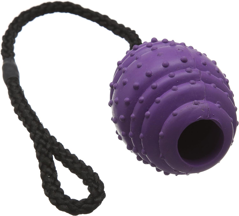 Classic Mascota Productos de Goma Pelota Ovalada en una Cuerda ...