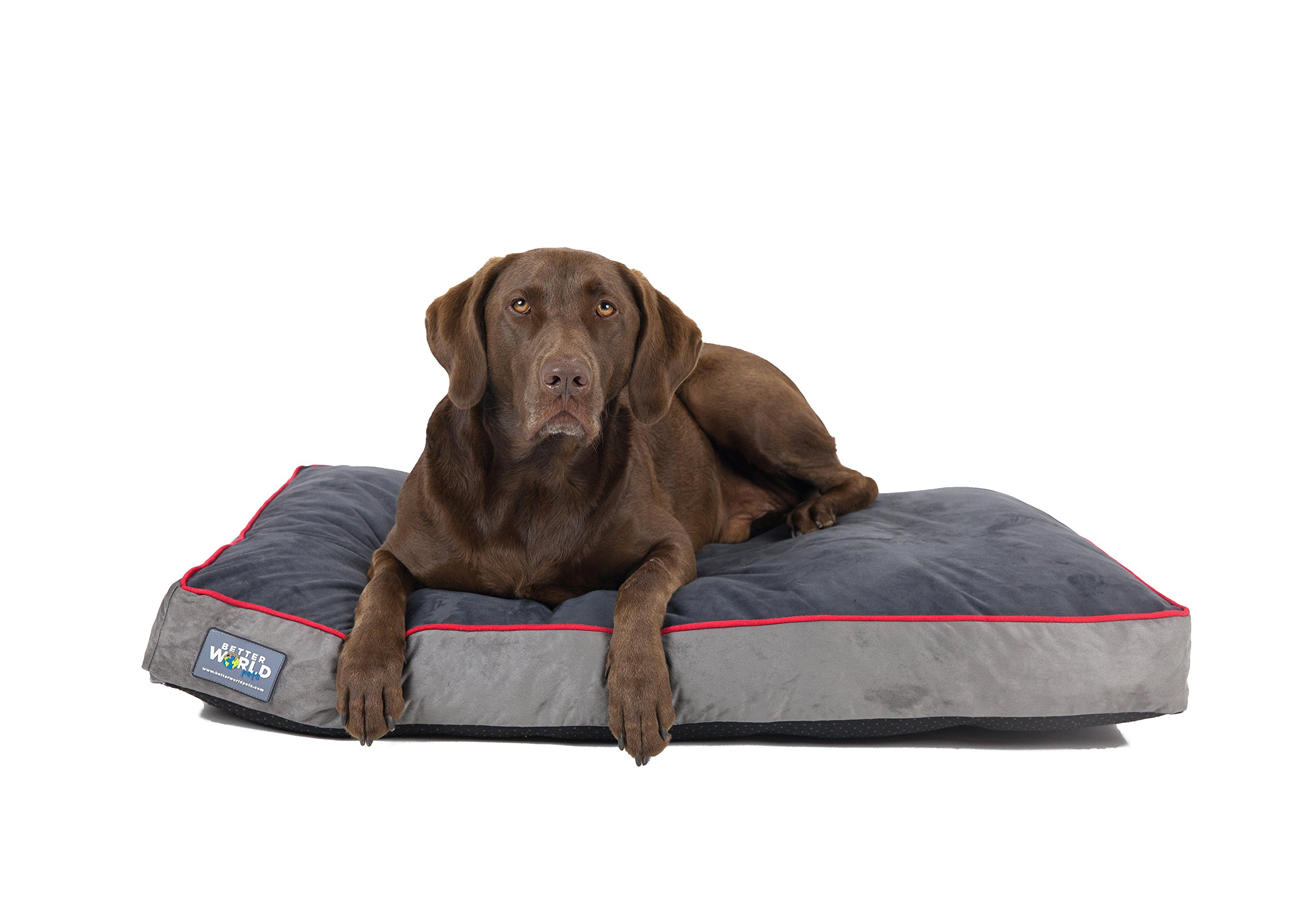 Better World Pets 5-Inch Thick Waterproof Orthopedic Memory Foam Dog Bed with 180 GSM Removable Washable Cover (Large, Grey with Spanish Red trim)