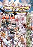 みんなの甲子園2013 ~第85回記念選抜高等学校野球大会全記録~ [DVD]