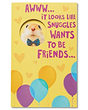 American greetings funny hamster birthday card american greetings american greetings funny hamster birthday card m4hsunfo
