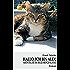 Hallo, ich bin Alex!: Abenteuer im Regenbogenland