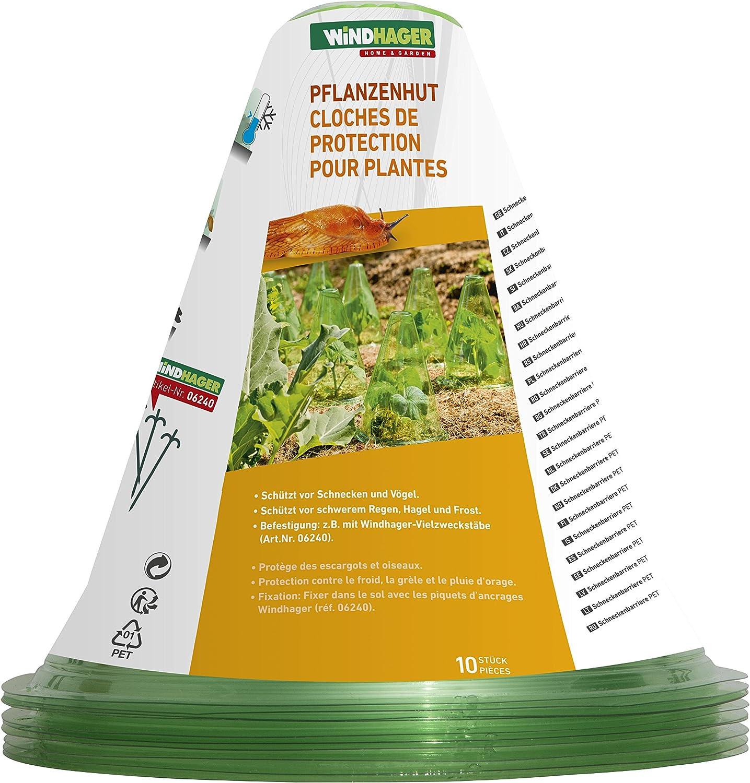 Windhager 06698 Cloche pour Plant Vert Diam/ètre 24 cm 10 Pi/èces