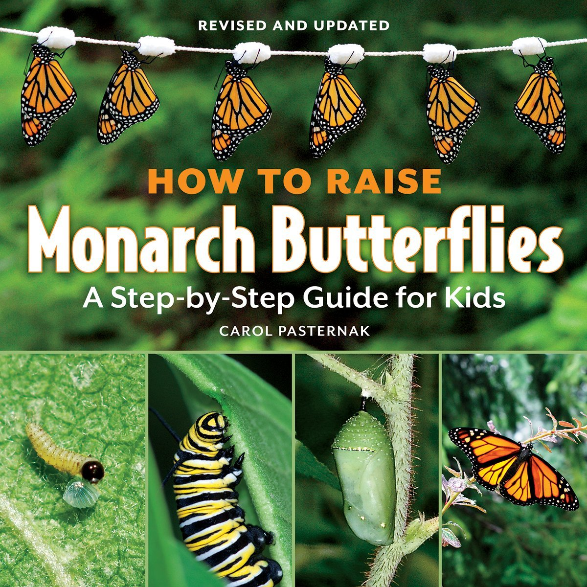How To Raise Monarch Butterflies: A Stepbystep Guide For Kids (how It  Works): Carol Pasternak: 9781770850026: Amazon: Books