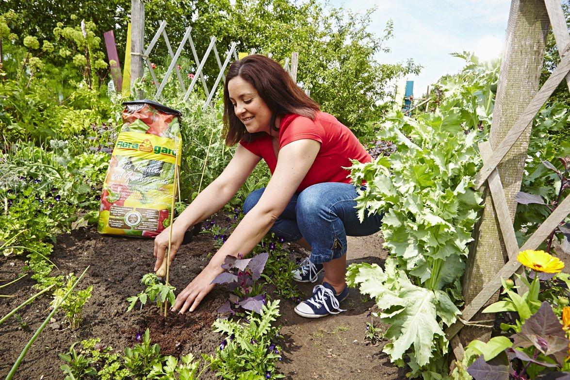floragard bio de tomates y verduras Tierra sin turba 40 L, 114820: Amazon.es: Jardín