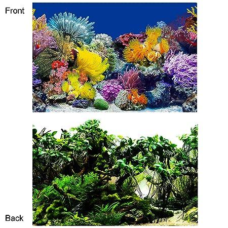 Rhww Doble Cara Cartel De Fondo del Acuario Coral/Submarino ...