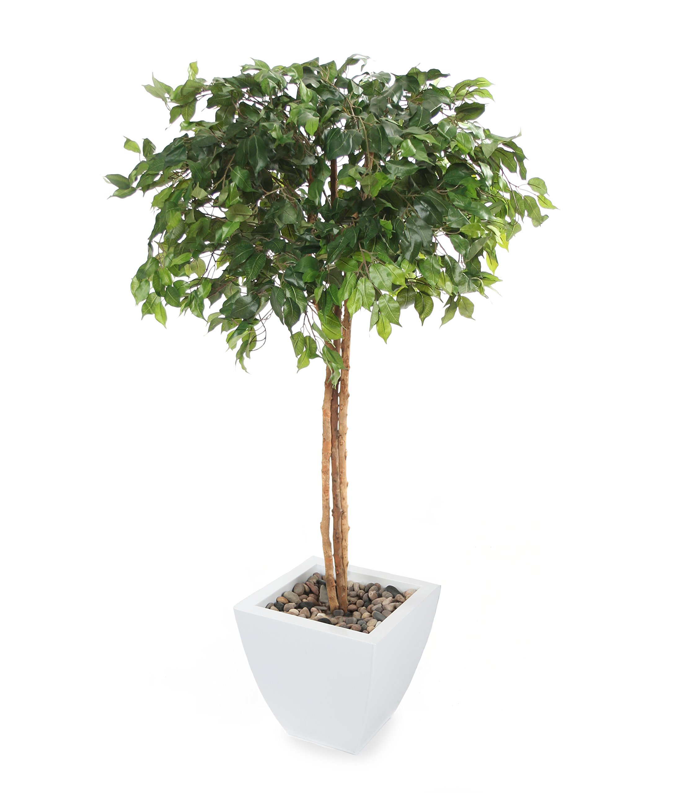 Closer2Nature Artificial 5ft Danielle Weeping Fig Tree - Portofino Planter Not Included by Closer2Nature