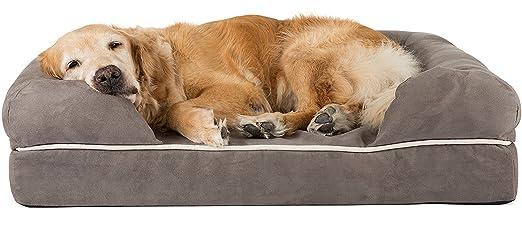 Friends Forever® Cama para perro grande/salón, Prestige Edition: Amazon.es: Productos para mascotas