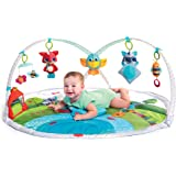 Tiny Love Dynamic Gymini Activity Mat, Meadow Days