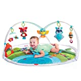 Amazon Price History for:Tiny Love Dynamic Gymini Activity Mat, Meadow Days