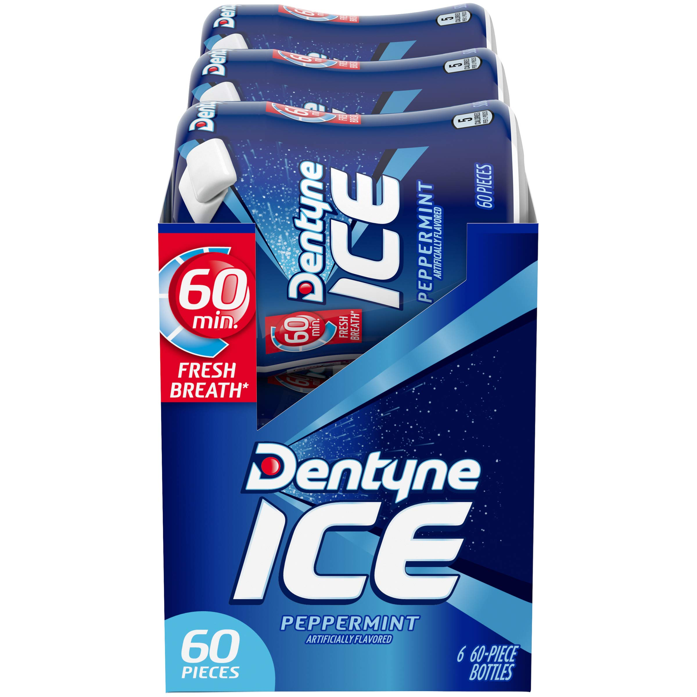Dentyne Ice Sugar Free Gum (Peppermint, 60 Piece, Pack of 6) by Dentyne