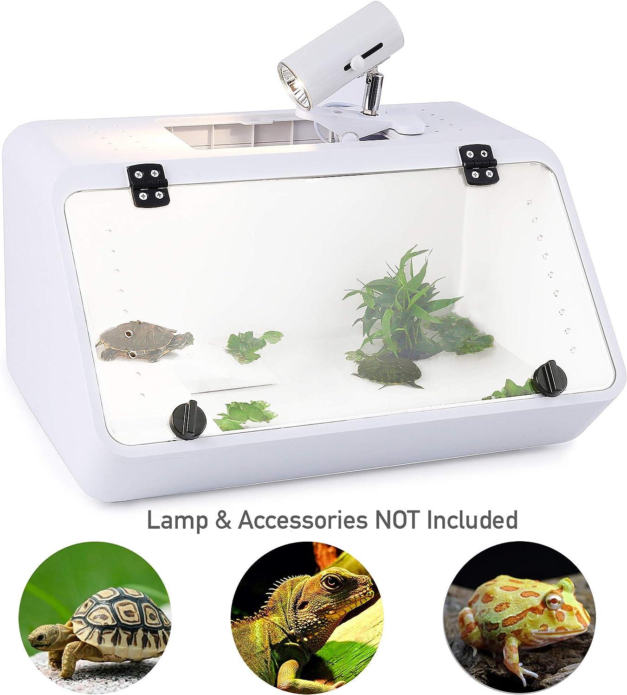 Turtle Tank Habitat