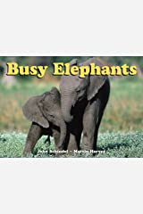 Busy Elephants (A Busy Book) Board book