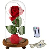 "YSBER ""Beauty & the Beast"" Red Silk Rose and LED Light with Fallen Petals in Glass Dome on a Wooden Base (Warm white light rose shade)"
