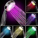 InteTech LED Light Shower,7 Colour, Multicolor, Universal Fit
