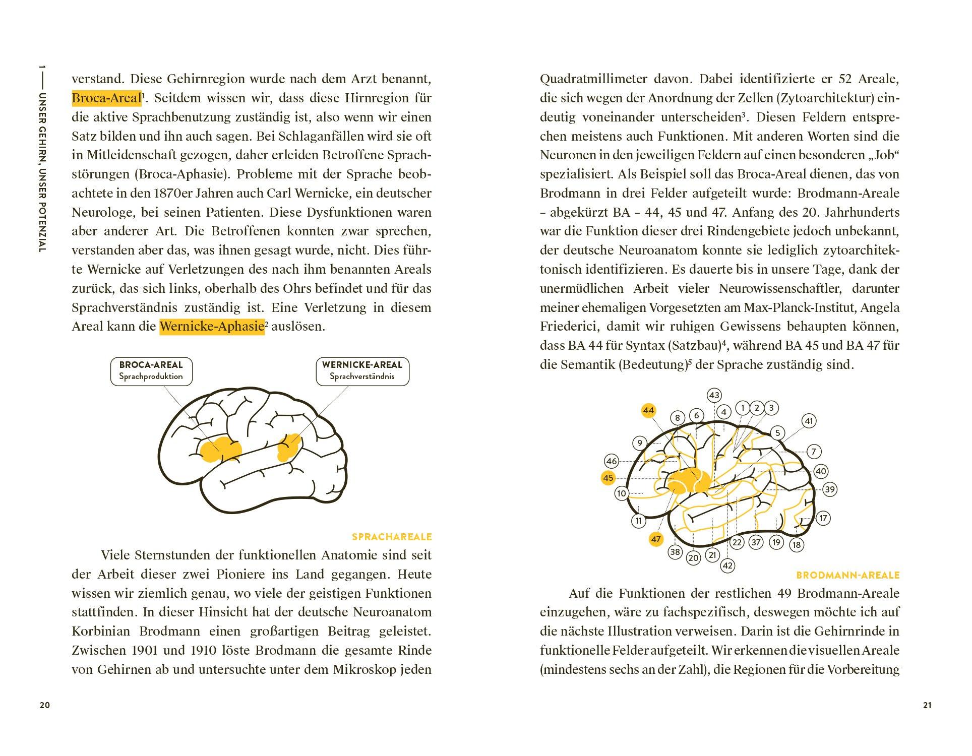 Anti Aging für das Gedächtnis: Beweg dich! Und dein Gehirn sagt ...