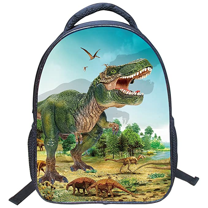 Amazon.com | 3D Animal Dinosaur Printed Kids