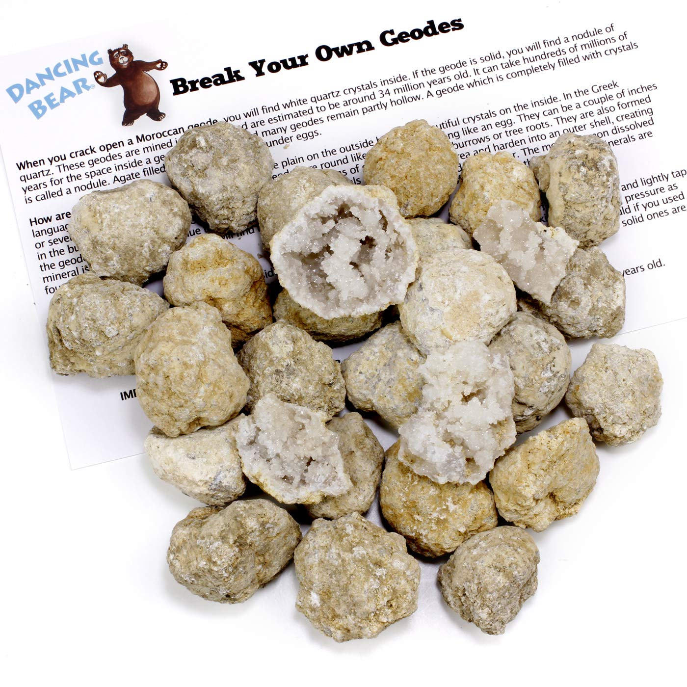 """Fun Party Favors /& Prizes 90/% Hollow-Small Educational Info and Instructions Included Crack Open /& Discover Amazing Surprise Crystals Inside Dancing Bear 25 Break Your Own Geodes 1-1.5/"""" Brand"""