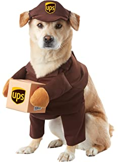 Amazon.com : California Costume Collections Holy Hound Dog Costume ...