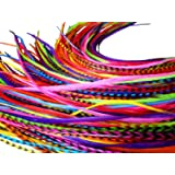 Feather Hair Extensions, 100% Real Rooster Feathers, Long Rainbow Colors, 20 Feathers with Bonus Free Beads and Loop Tool Kit