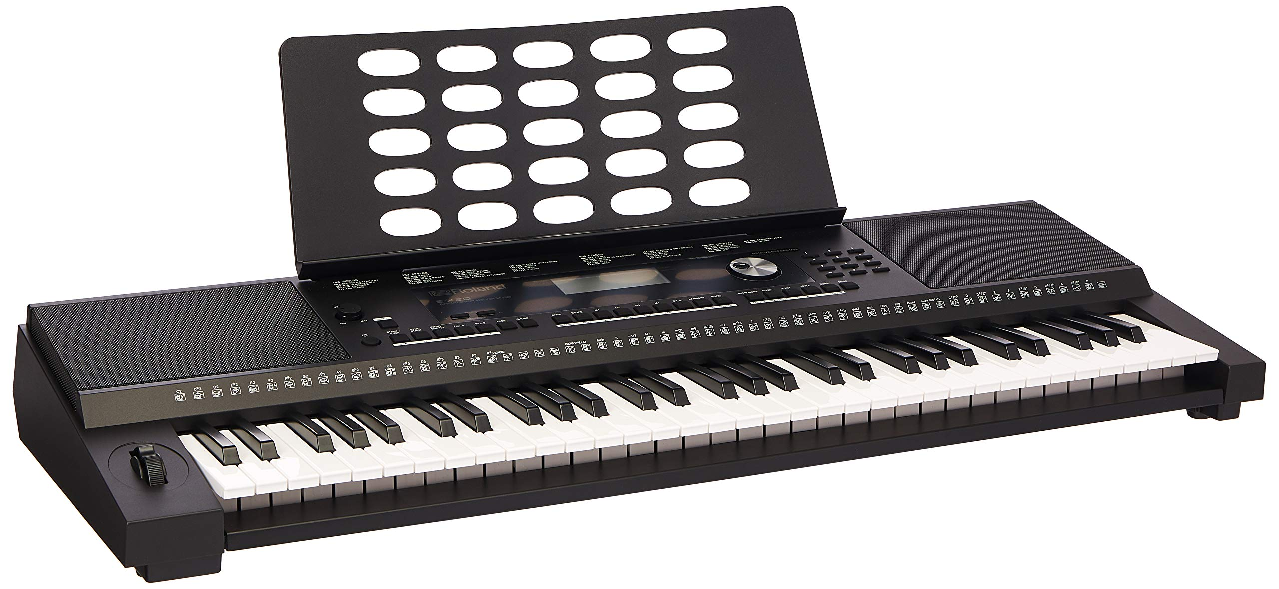 Roland EX-20 Arranger Keyboard: Amazon in: Electronics