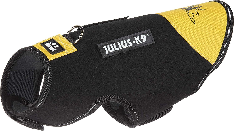 Julius-K9, Chaqueta de neopreno para perro IDC, Talla: Baby 2 ...