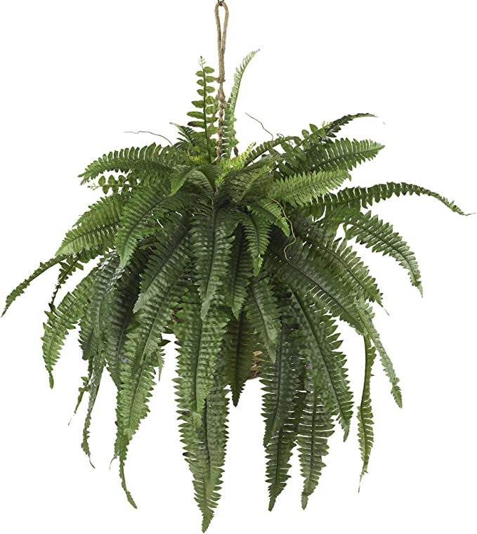 Amazon Com Nearly Natural 6774 22in Large Boston Fern Hanging Basket Green Home Kitchen