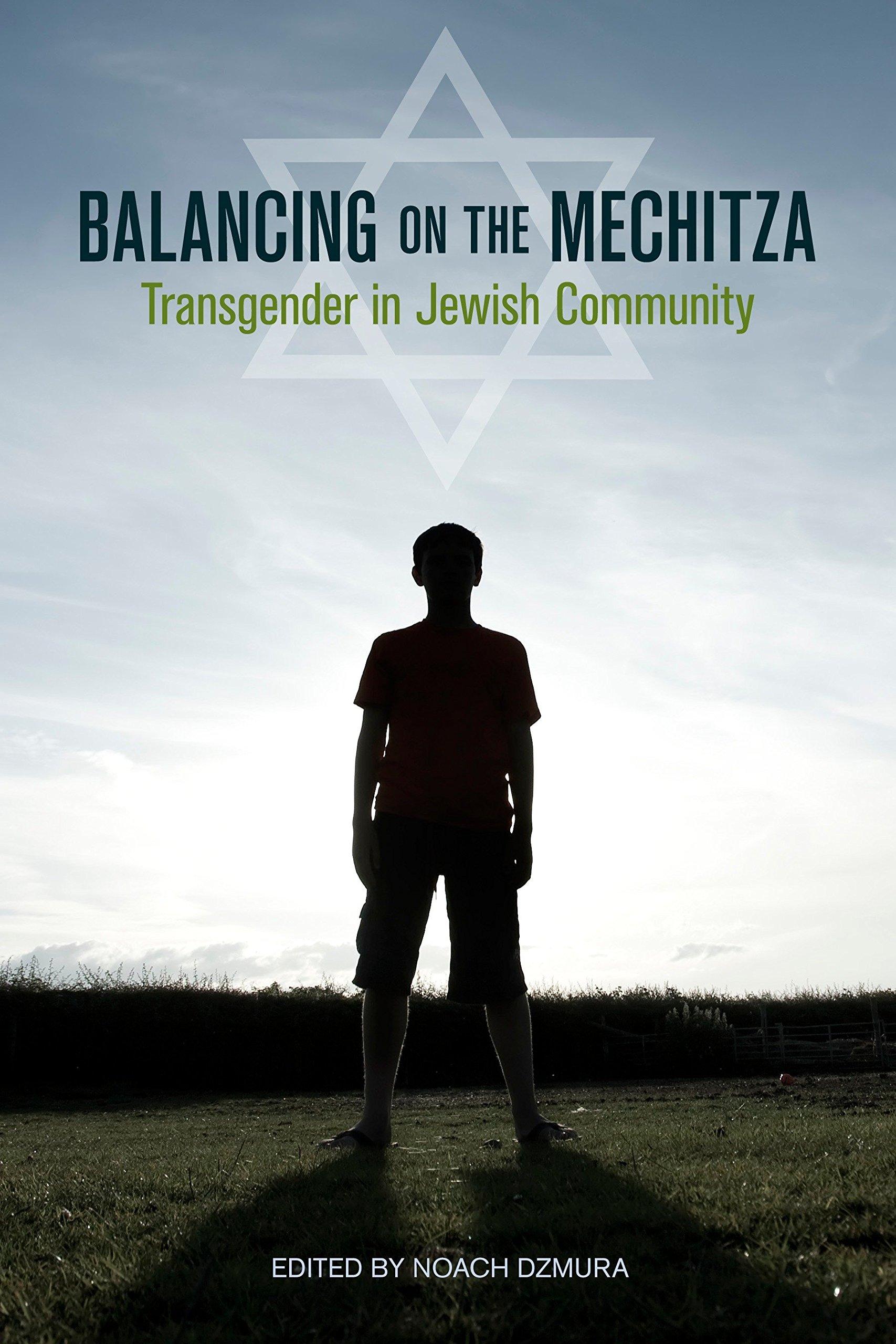Balancing On The Mechitza  Transgender In Jewish Community  Io Series Band 66