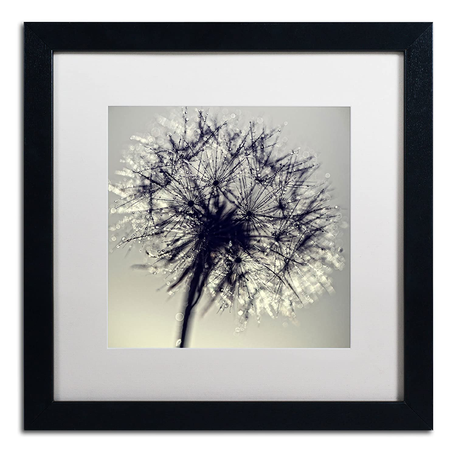 Amazon com morning sparkles artwork beata czyzowska young in white matte and black frame 11 by 11 inch posters prints