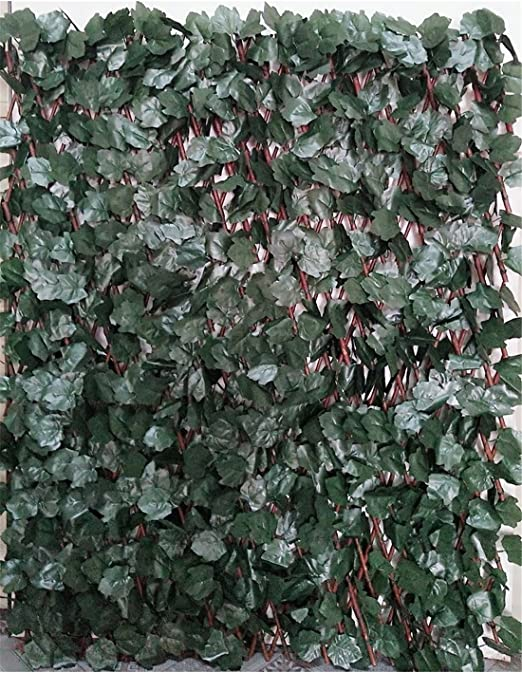 Faura - Celosia Extensible de Mimbre - Hoja Sauce: Amazon.es: Jardín