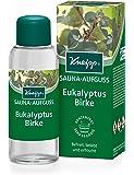 Kneipp - 8009 - Sauna Infusion Eucalyptus Bouleau - Mixte 100 ml (Import Allemagne)