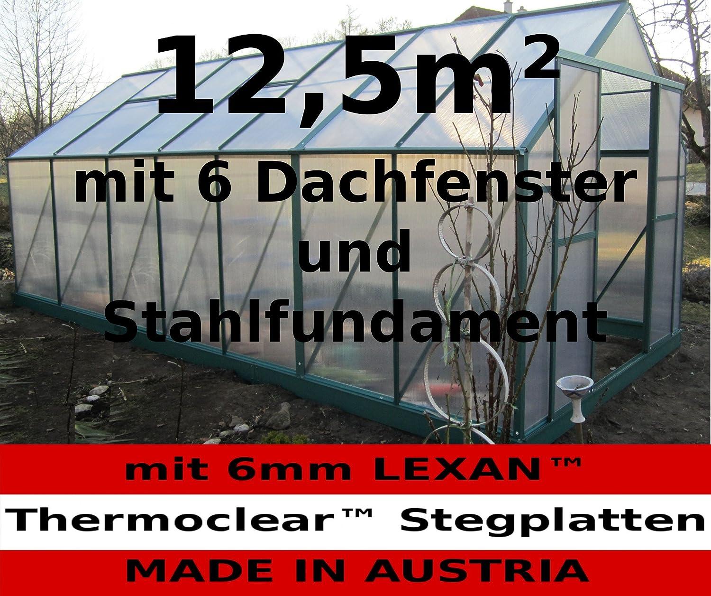 Lexan thermoclear uv 4,5 mm plaques alvéolaires serre construire avec stegplatten