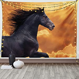 Ambesonne Horses Tapestry, Portrait of Galloping Friesian Horse with Hot Sun Rays Intensity Honor Grace Theme, Wide Wall Hanging for Bedroom Living Room Dorm, 60