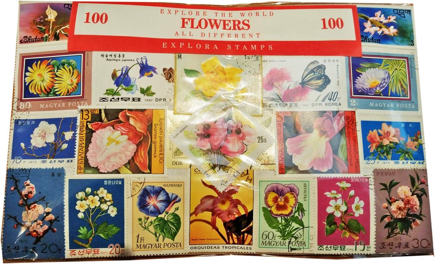 Colección Sello Flores Conjunto de 100 - De Todo el Mundo / Todos Diferentes / Flora / Recuerdo Botánico: Amazon.es: Juguetes y juegos