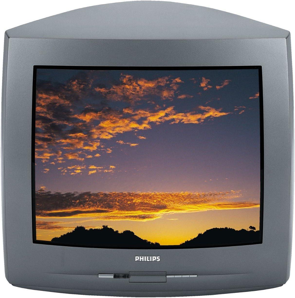 Philips 21 PT 2665 Formato 4: 3 50 Hertz televisor: Amazon.es: Electrónica