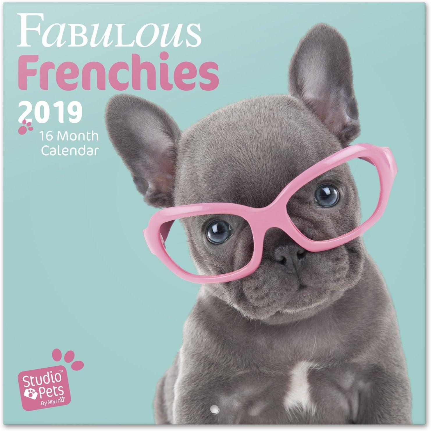 Grupo Erik - Calendario Da Muro 2019 Studio Pets French Bulldog 30 X 30 Cm
