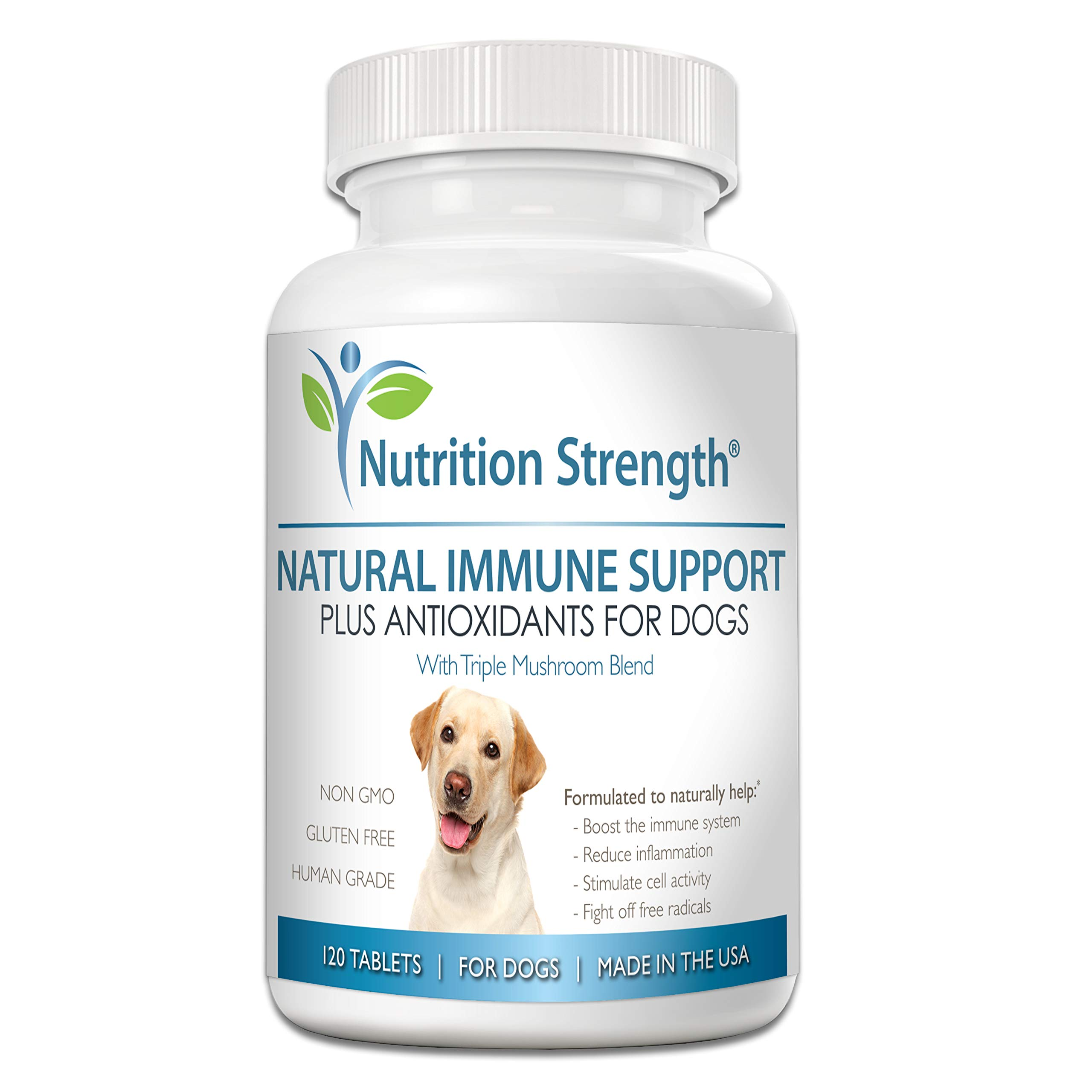 Nutrition Strength Immune Support for Dogs Plus Antioxidant, Reishi, Shiitake, Maitake, Turkey Tail Mushrooms for Dogs, with Coenzyme Q10, Nutritional Support for Cancer in Dogs, 120 Chewable Tablets by Nutrition Strength