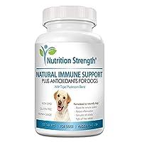 Nutrition Strength Immune Support for Dogs Plus Antioxidant, Reishi, Shiitake, Maitake...