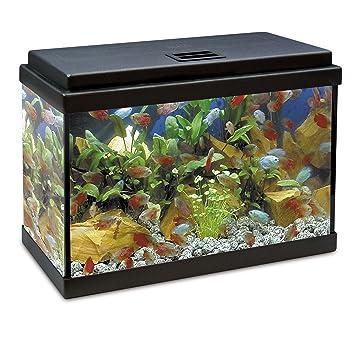 ICA KDI20 Kit Interior Aqualed con Filtro KW200, Negro: Amazon.es: Productos para mascotas