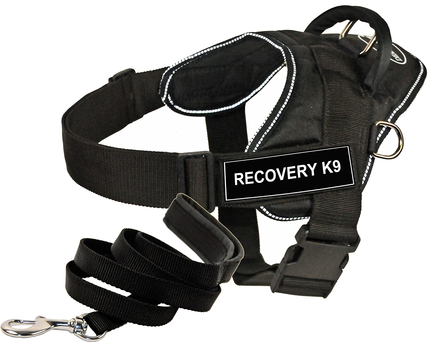 Dean & Tyler DT Fun Works Harness 6-Feet Padded Puppy Leash, Recovery K9, Large, Black
