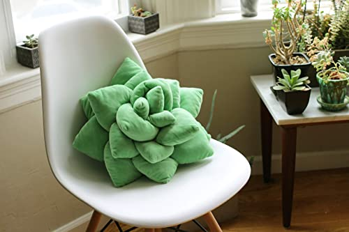 Succulent Cactus Décor Pillow for Green or Garden Lovers Green Nursery Living Room Accent 3D Shape to Create Your...