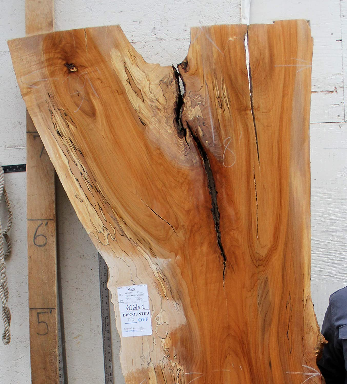 Remarkable Live Edge Countertop Bartop Natural Maple Raw Wood Slab Short Links Chair Design For Home Short Linksinfo