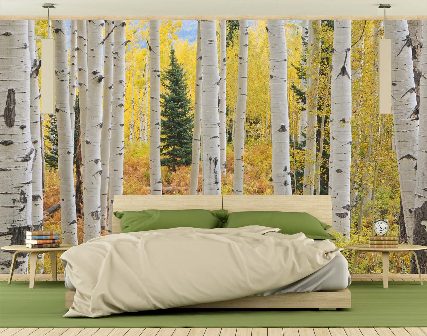 13.5-Feet wide by 9-Feet high.Prepasted robust wallpaper full wall size mural from a photo of: Aspen Forest Trees Elk Mountains. Easy to install remove and reuse. If you do as in our video by Muralunique (Image #2)