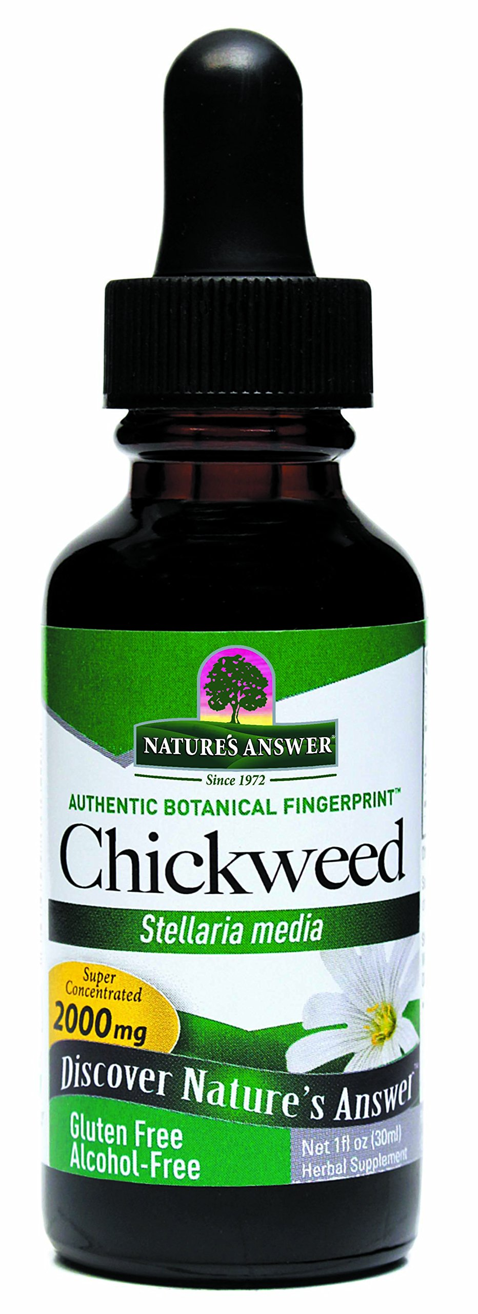 Nature's Answer Alcohol-Free Chickweed Herb, 1-Fluid Ounce by Nature's Answer