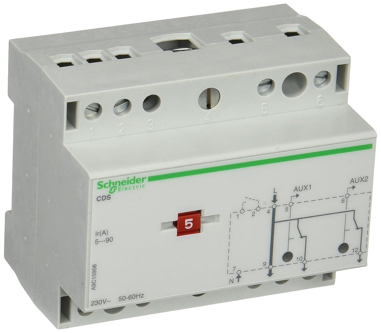 Schneider Electric A9C15908 Cds Monofásico 2 Circuitos: Amazon.es: Industria, empresas y ciencia