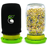 Sprouting Jar Kit Seed Sprouter Set Includes Wide Mouth Mason Jar, Stainless Steel Mesh Lid, Blackout Sleeve and Plastic…