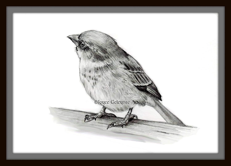Amazon com art print small bird pencil drawing realism wildlife art from original pencil art handmade