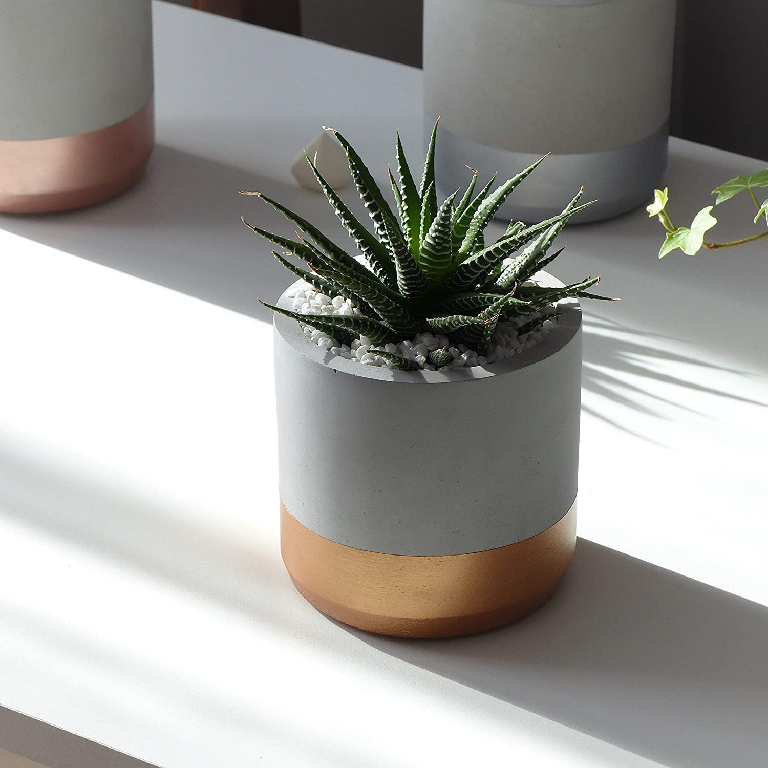 Round Indoor Gray and Copper Cement Flower Pot Hygge Concrete Planter Pot Modern Gardening for Potted Cactus and Succulent Plants Amazon.ca Handmade & Round Indoor Gray and Copper Cement Flower Pot Hygge Concrete ...