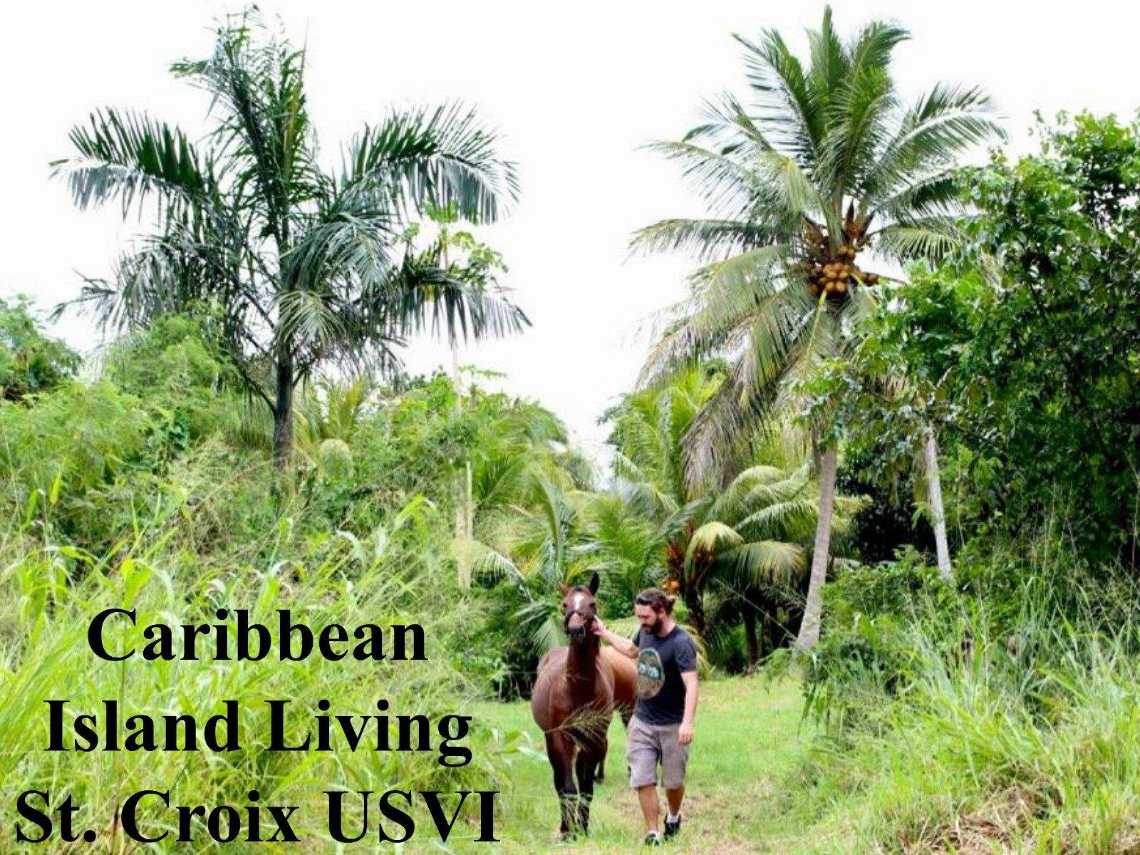 Caribbean Island Living St. Croix USVI - Season 1