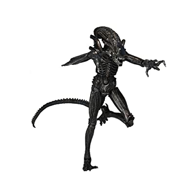 "NECA Aliens 7"" Scale Action Figure Series 5 Genocide Alien Black Action Figure: Toys & Games"