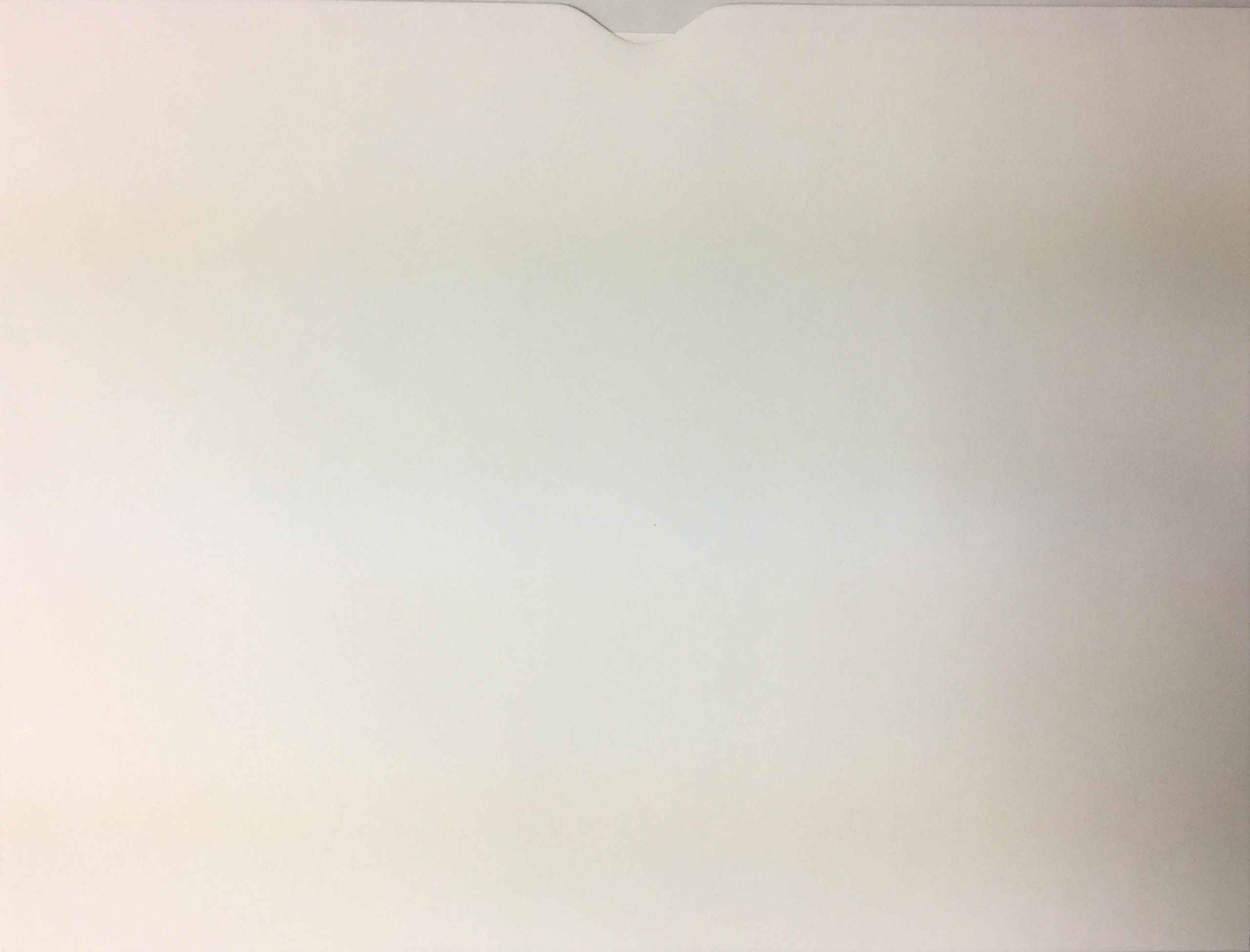 Plain White Blank Vehicle Deal Envelopes Deal Jackets (500/box) (W16T)